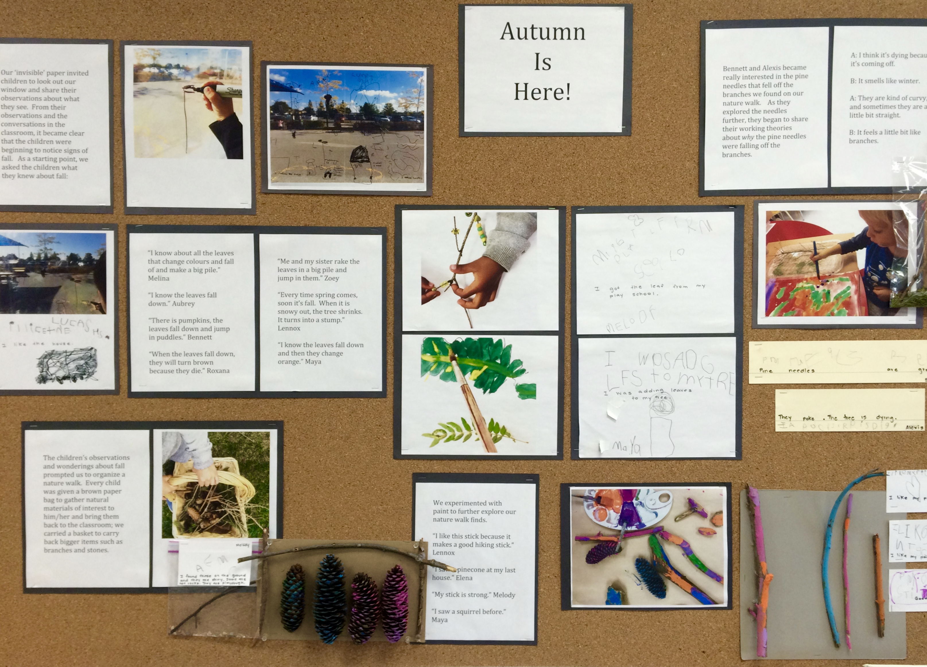 Pedagogical Documentation In Kindergarten A How To Guide